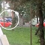 Lublin: Jechał na hulajnodze. Omal nie zginął