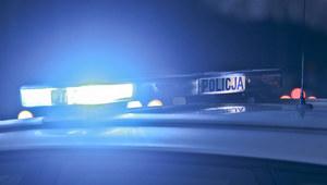 Lubuskie: Samochód uderzył w drzewo i spłonął. Zginęły dwie osoby