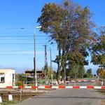 Lubuskie: Tragiczny wypadek na przejeździe kolejowym