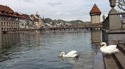 Lucerna: Łabędzie, smoki i paralotnie