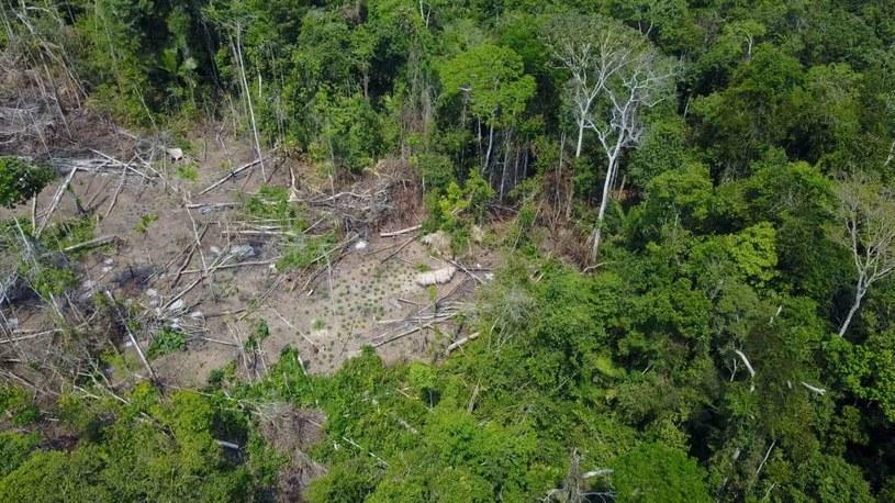 Ludność rdzenna zamieszkująca Amazonię jest w niebezpieczeństwie /YouTube