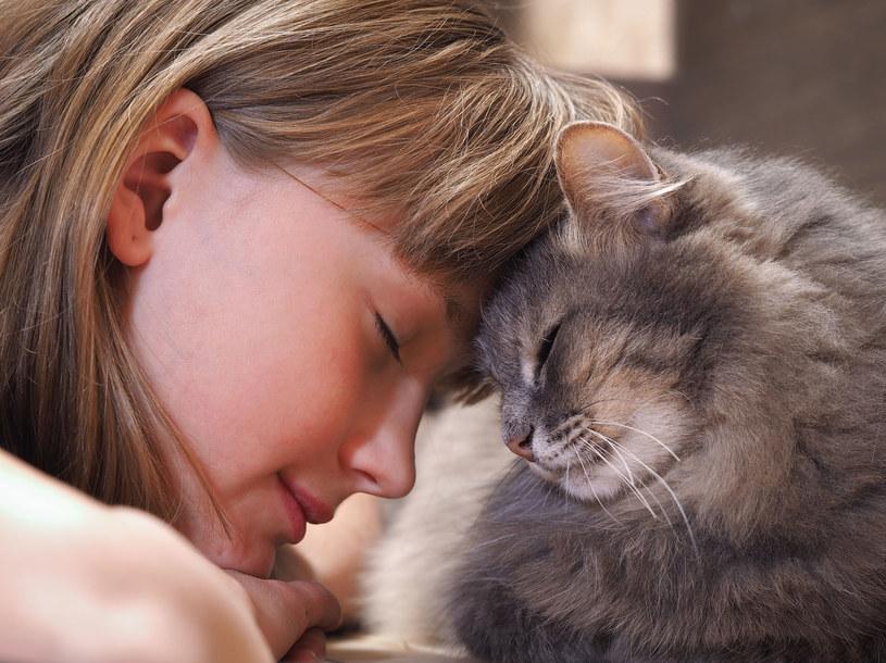 Ludzi i koty może połączyć wyjątkowa więź /123RF/PICSEL
