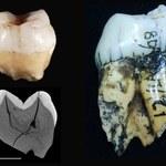 Ludzie byli na Sumatrze już 63 000 lat temu