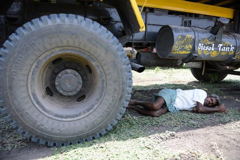 Ludzie szukają choć odrobiny ciena /AFP