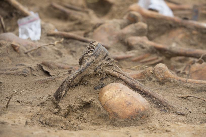 Ludzkie szczątki; zdj. ilustracyjne /Marek Maliszewski  /Reporter