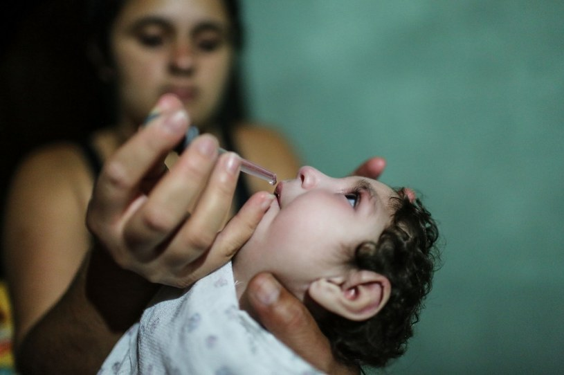 Ludzkość jest coraz bliżej powstrzymania wirusa Zika /AFP