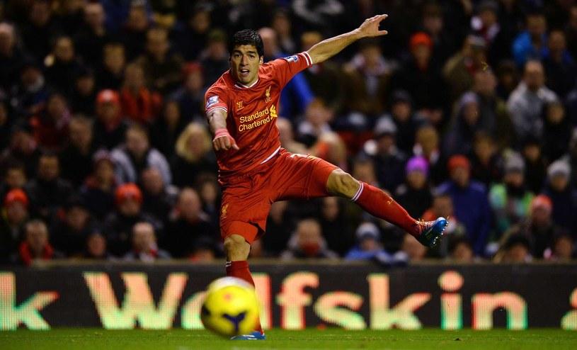 Luis Suarez, gwiazda Liverpoolu /AFP