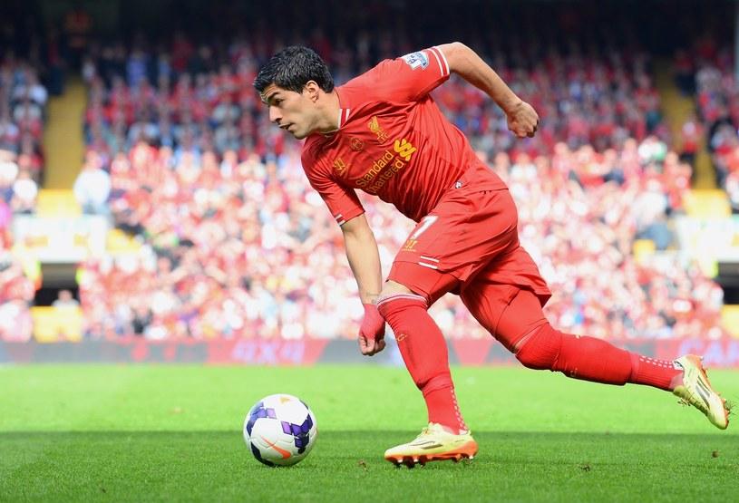 Luis Suarez - najlepszy zawodnik Premier League /AFP