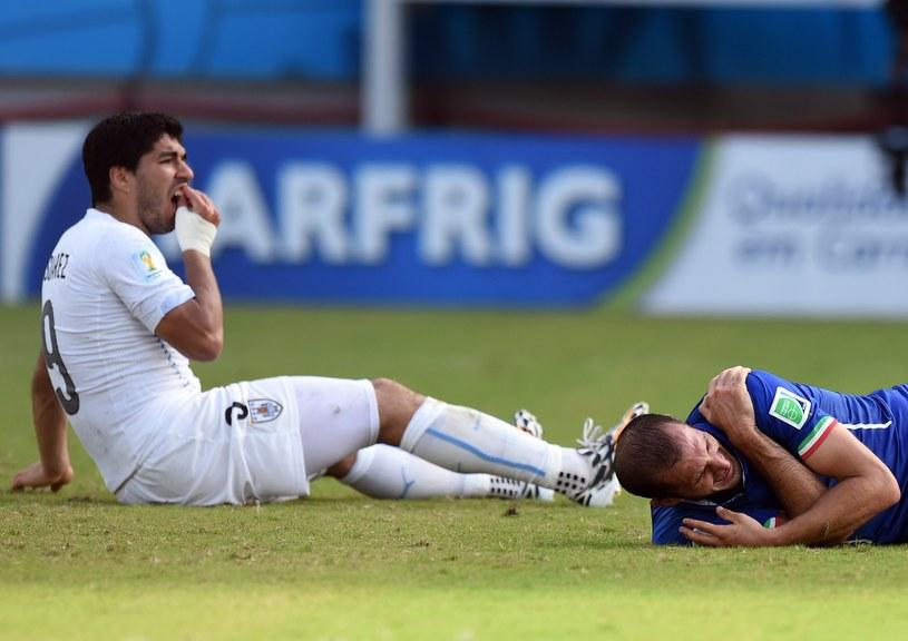 Luis Suarez sprawdza szczękę, Giorgio Chiellini leży na murawie /AFP