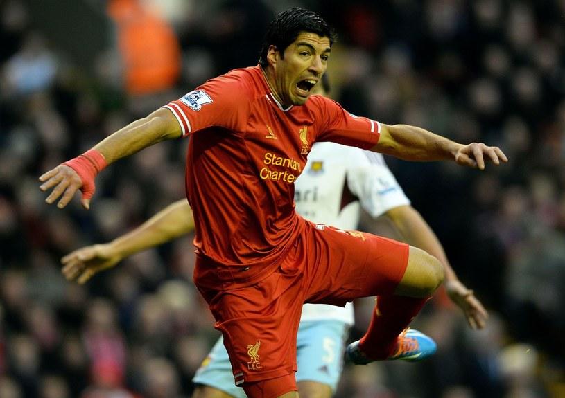 Luis Suarez w akcji /AFP