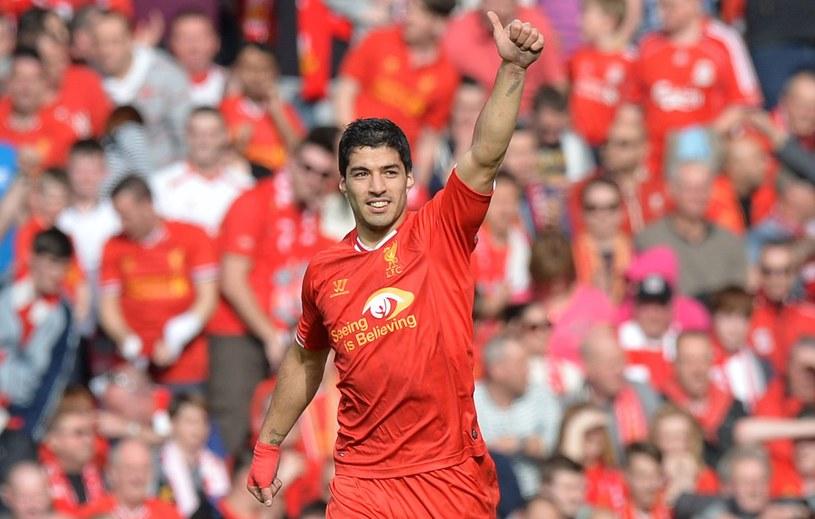 Luis Suarez w barwach Liverpoolu, do którego dołączył zimą 2011 roku /AFP