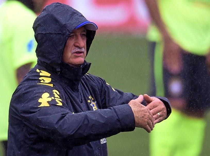 Luiz Felipe Scolari podczas deszczowego treningu Brazylijczyków /AFP