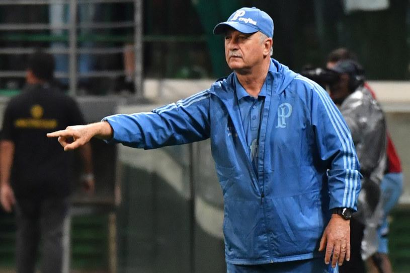 Luiz Felipe Scolari, trener Palmeiras /AFP