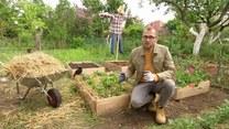 Łukasz Skop i ściółkowanie ogrodu. Na czym polega zabieg?