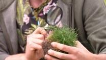 Łukasz Skop i sposoby na piękny trawnik