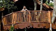 Luksusowy dom na drzewie. Spełnij marzenie z dzieciństwa
