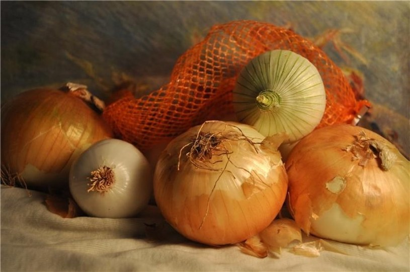 łupinki z cebuli /© Photogenica