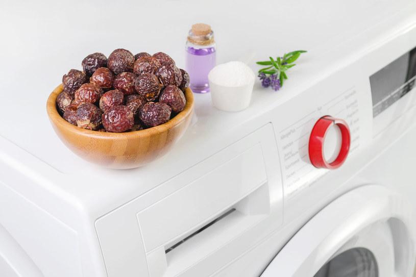 Łupiny orzechów piorących są tańsze i wydajniejsze od proszku (ok. 20 zł za pół kg). W jednej porcji łupin możesz uprać rzeczy nawet 3 razy. Na 5 kg prania wystarczy 5–6 sztuk. /123RF/PICSEL