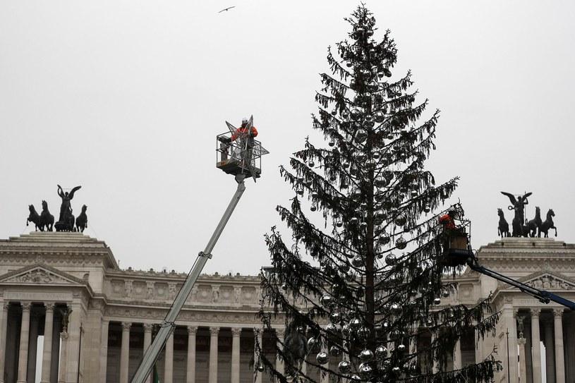 """""""Łysy drapak"""" stał się jedną z największych atrakcji włoskiej stolicy ostatnich tygodni /RICCARDO ANTIMIANI /PAP/EPA"""