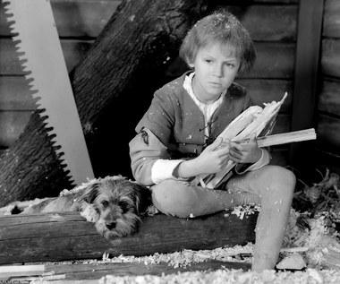 """Ma na koncie ponad 100 ról kinowych i telewizyjnych. Laureat Wiktora (1995, 1998, 1999), Złotej Kaczki (1997, 2003) Telekamery """"Tele Tygodnia"""" (1998), Orła (2003), dwukrotny zdobywca nagrody dla najlepszego aktora na Festiwalu Filmowym w Gdyni (1995, 2002) - Marek Kondrat obchodzi 65. urodziny.  Debiutował w kinie, kiedy miał niespełna 11 lat, w filmie dla dzieci """"Historia żółtej ciżemki"""" (1961) Sylwestra Chęcińskiego."""