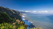 Madera. Wyspa z mchu i paproci