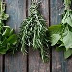 Magiczne właściwości ziół - rozmaryn, jaśmin oraz wanilia