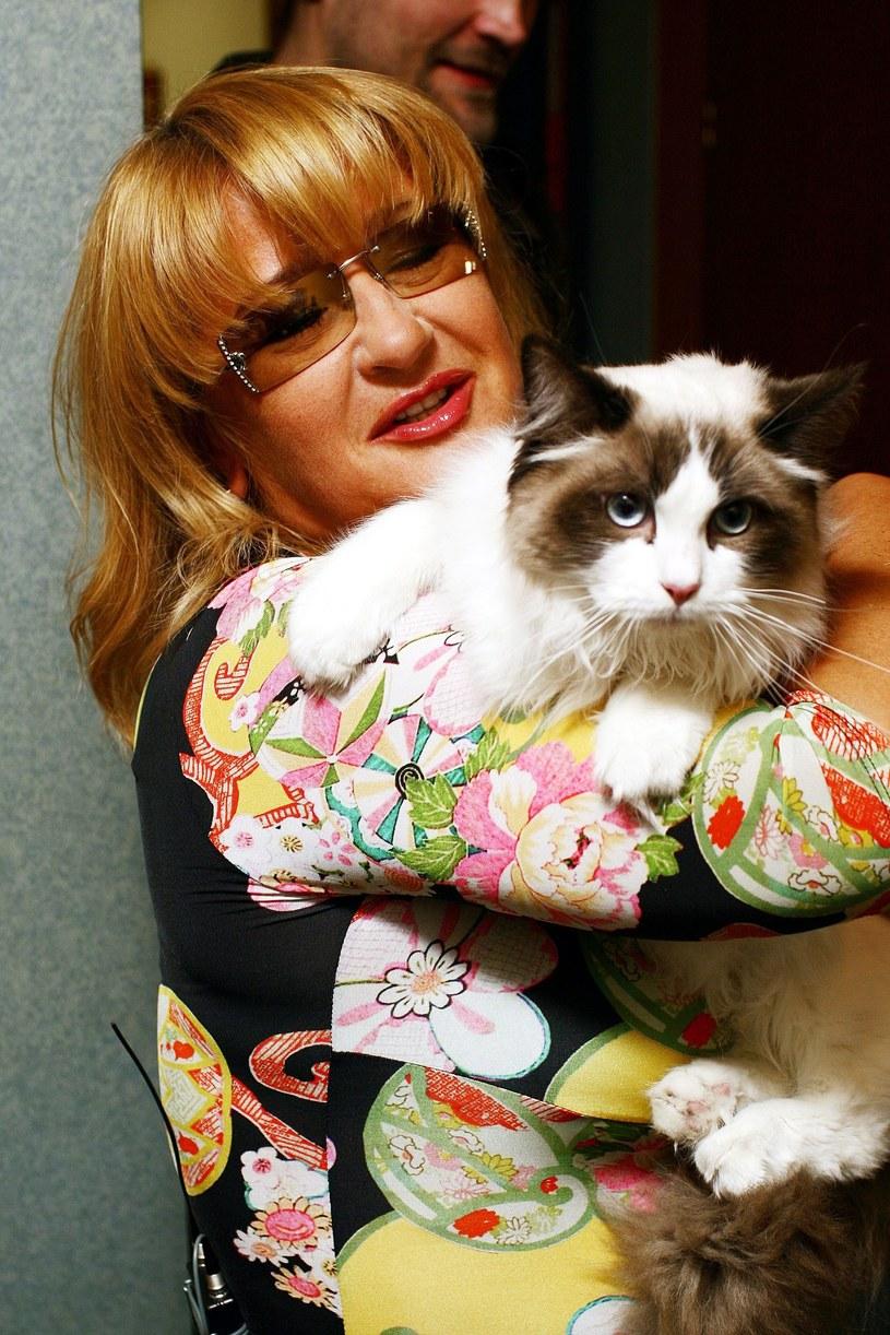 Majka Jeżowska uwielbia koty /Krzysztof Świeżak /East News