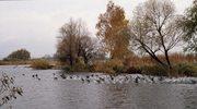 Majowa wyprawa nad Jezioro Ślesińskie i Wartę