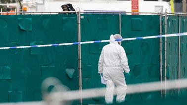 Makabryczne odkrycie pod Londynem. W ciężarówce znaleziono 39 ciał