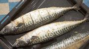 Makrela z pieca