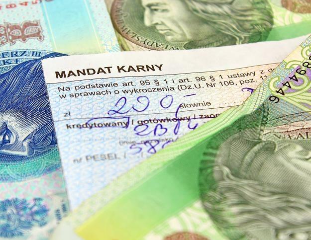 Maksymalny mandat za przekroczenie prędkości od 16 lat wynosi 500 zł /©123RF/PICSEL