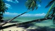 Małe Antyle: Trynidad /Encyklopedia Internautica