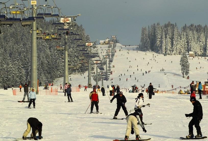 Małe Ciche - stok narciarski /Jacek Waszkiewicz /Reporter