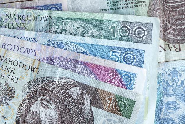 Małe firmy będą zwalniać pracowników z powodu wzrostu płacy minimalnej /©123RF/PICSEL
