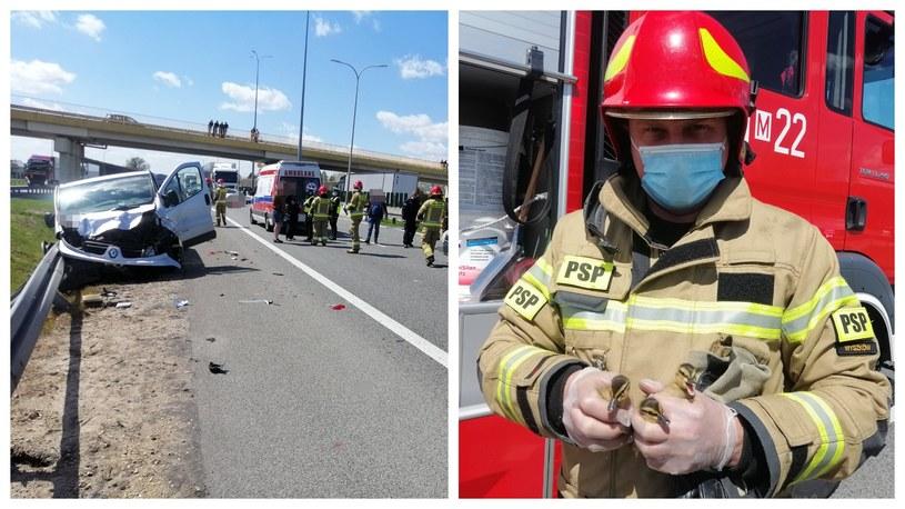 Małe kaczki doprowadziły do groźnego wypadku /Policja Wyszków /Policja