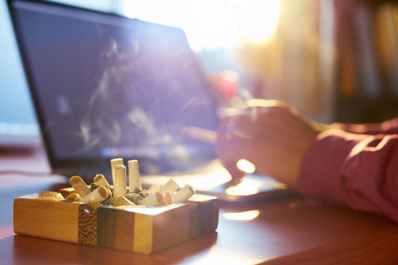 Mało kto wie, że szkodliwy dym tytoniowy odkłada się również w naszych meblach /123RF/PICSEL