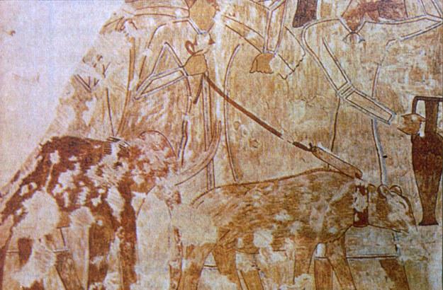 Malowidło przedstawiające mamuta karłowatego prowadzonego przez syryjskich kupców /MWMedia
