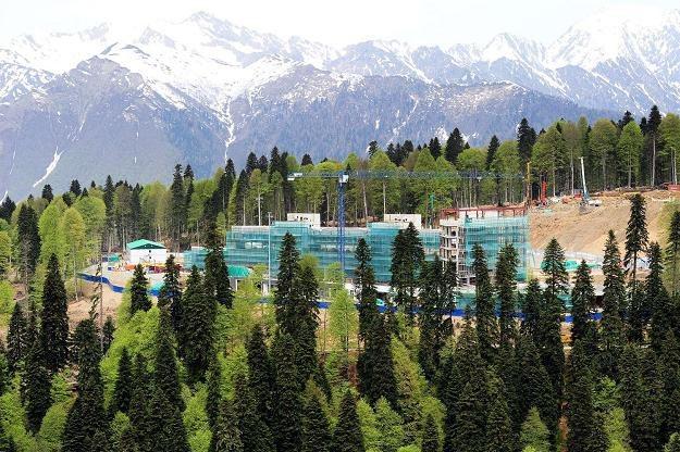 Malowniczo położone Soczi będzie areną Zimowych Igrzysk Olimpijskich w 2014 roku /AFP