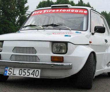 Maluch WRC