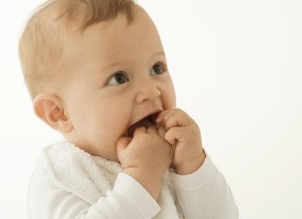 Maluchowi należy regularnie przemywać dziąsła zwilżonym gazikiem