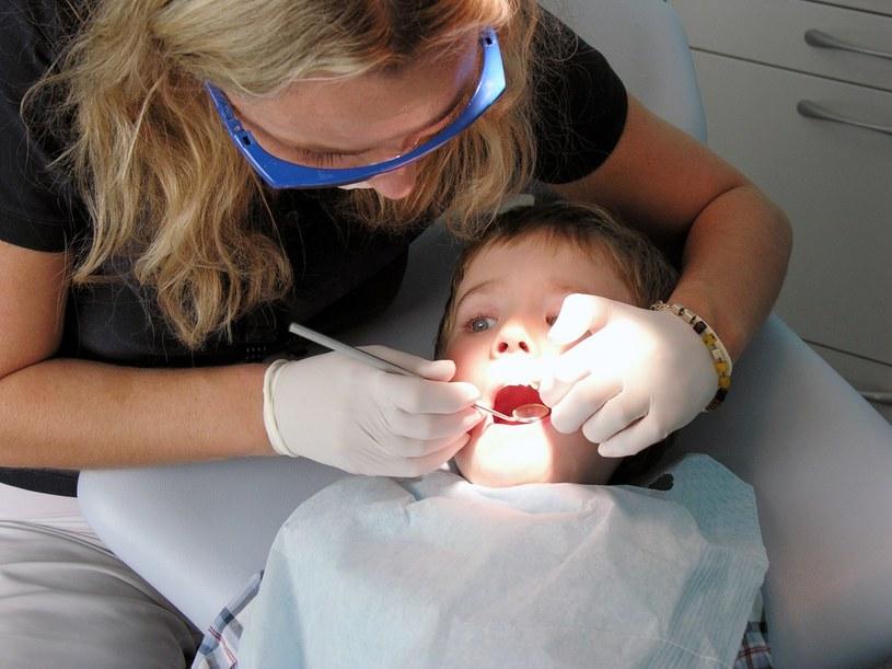 Mały pacjent u dentysty /Marianna Osko /East News