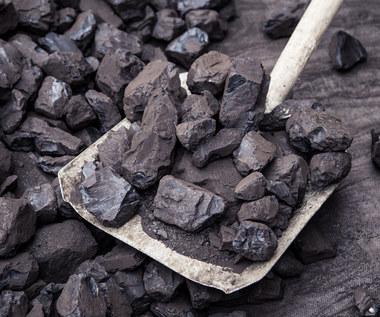 Mamy węgiel i nie zawahamy się go użyć