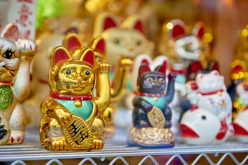 Maneki neko - koty, które mają znaczenie /123RF/PICSEL