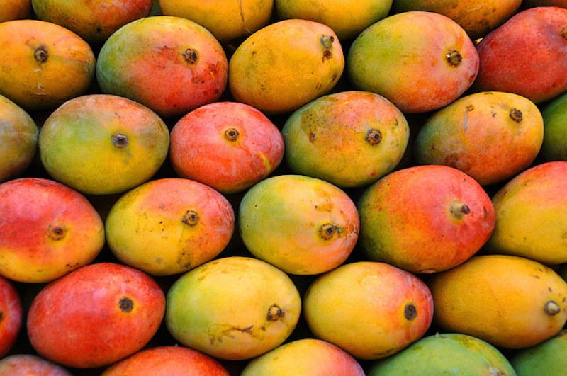 mango na pamięć /© Photogenica