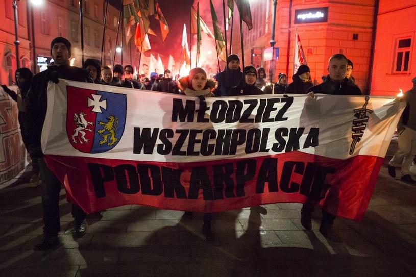 Manifestacja Młodzieży Wszechpolskiej /Grzegorz Bukała /Reporter
