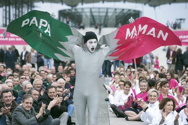 Manifestacja przeciwko małżeństwom homoseksualnym w Paryżu /PAP/EPA