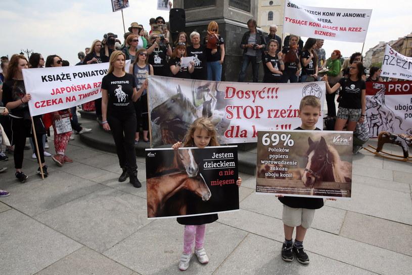 Manifestacja przeciwko wywozowi polskich koni na rzeź do Japonii /Tomasz Gzell /PAP