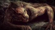 Manuel Blanco Romasanta - bestia gorsza od wilkołaka