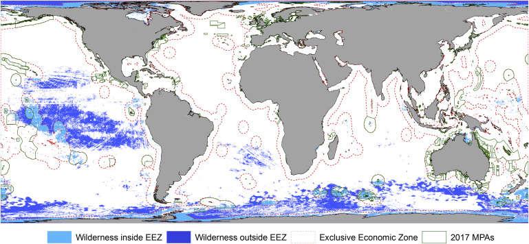 Mapa prezentująca dziewicze obszary morskie na Ziemi /materiały prasowe