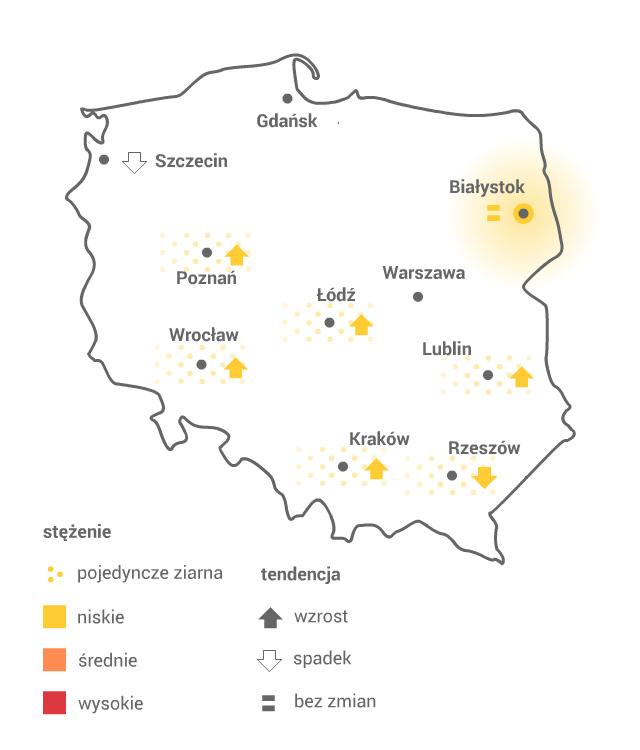 Mapa pylenia brzozy /Grafika RMF FM /